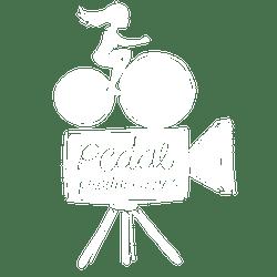 Pedal Producciones